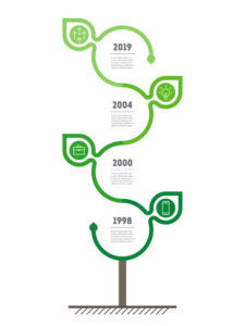 Vertical Timeline infographics with leafs. The development and g